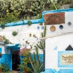 A blue and white painted house built into a cave with prickly pear cacti growing on the hill above it.