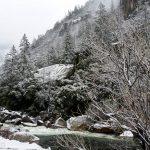 Yosemite after heavy overnight snow.