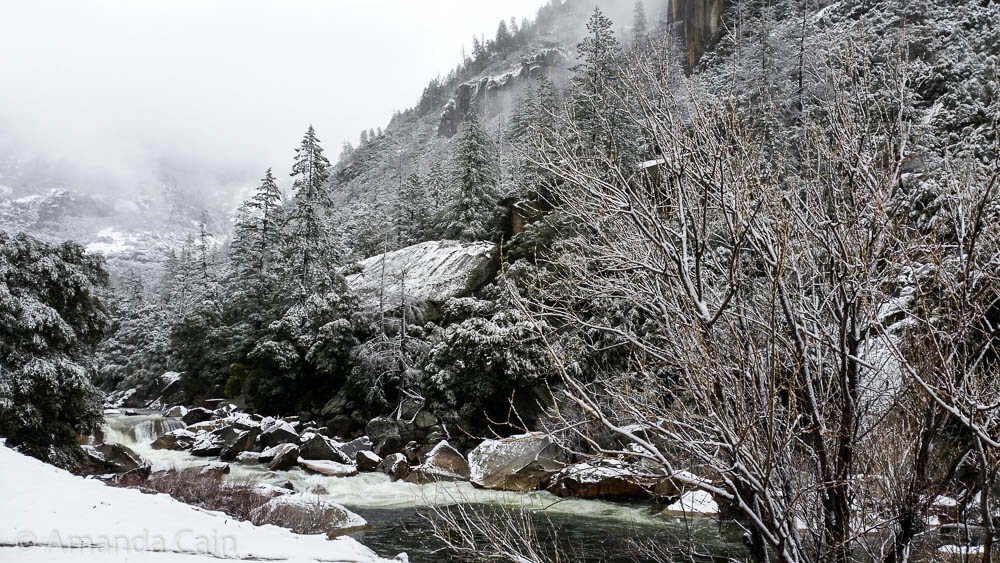 Yosemite after heavy overnight snow.
