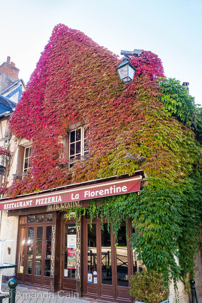 Brilliant transition to autumn colours covering this restaurant.