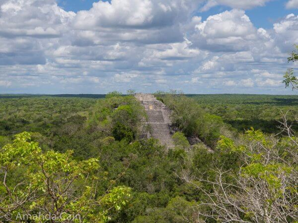 Structure 1 at Calakmul is one of the tallest Mayan pyramids. Here it is surrounded by an ocean of green.