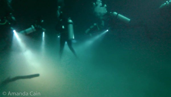 Our group preparing to enter the toxic hydrogen sulfide fog. The flippers for the upright diver in the centre have already disappeared in the thick fog.