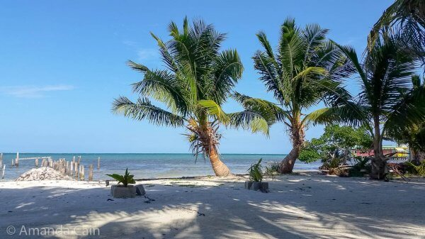 The view from the hammock zone out the front of our guesthouse. Caye Caulker was pretty much love at first sight.